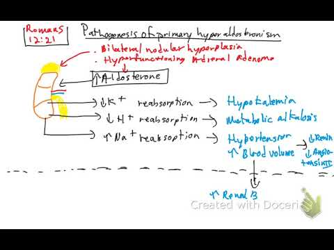 Primary hyperaldosteronism - YouTube