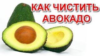 видео Как есть авокадо