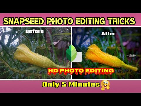 Download Snapseed Photo Editing Tutorial   Realistic Photo Editing   Snapseed Photo Editing Tricks 2021  