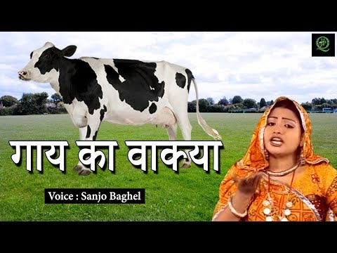गाय का वाक़्या !! Sanjo Baghel !! Best Islamic Waqia !!  Just Qawwali