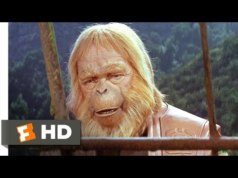 Planet of the Apes (3/5) Movie CLIP - Writing in the Sand (1968) HD