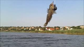 Хаджибей. Рибалка 08 2016