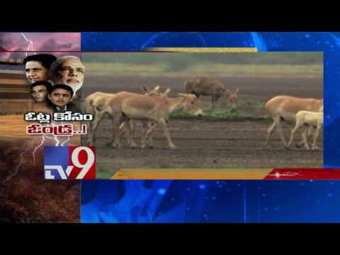 Modi - Akhilesh punch dialogues in UP Poll campaign - TV9