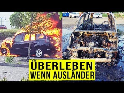 Wenn AUSLÄNDER ÜBERLEBEN Realtalk ..
