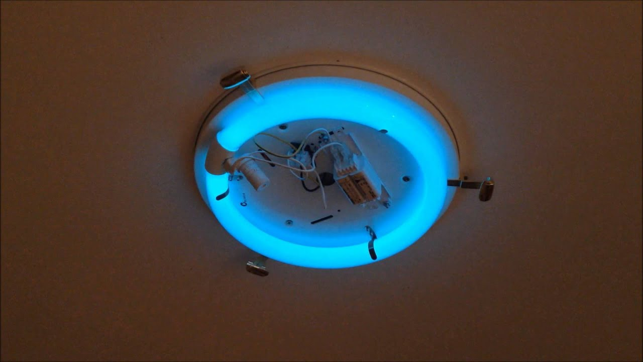 Nec 32w circular fluorescent lamp with safety after glow for Tubo fluorescente circular 32w