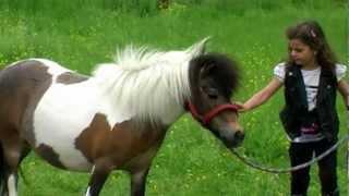 Sissi - Mein kleines Pony