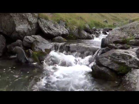 8 hrs river screensaver 1080p 50 fps
