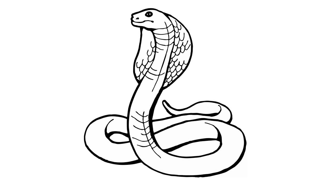 Wie zeichnet man eine Schlange (Kobra, naja, Tiere)