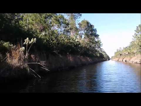 Bass Fishing Collier County Canals In The Estates