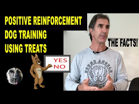 Positive Reinforcement Dog Training Using Treats - Robert Cabral Dog Training Lecture