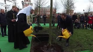 Патриарх Кирилл принял участие в посадке деревьев главной липовой аллеи Донского монастыря