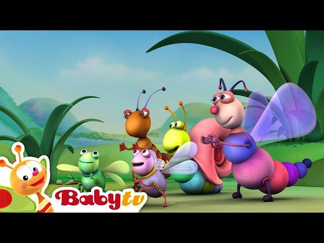 Big Bugs Band - Het is een rap- BabyTV Nederlands