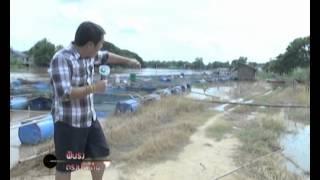 IBTV - รายงานน้ำท่วมจังหวัดอ่างทอง 3