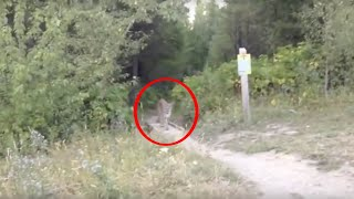 5 Scary & Unexpected Videos Recorded From The Woods…