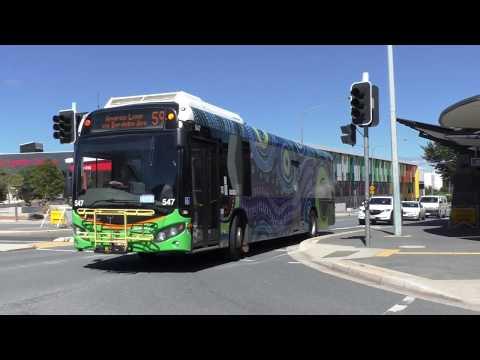 Buses at Gungahlin - Canberra Transport