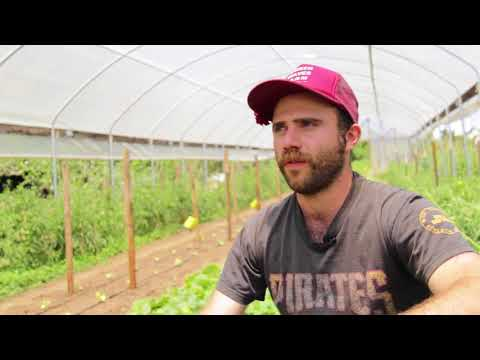Apprenticeship In Ecological Horticulture, UCSC Farm & Garden