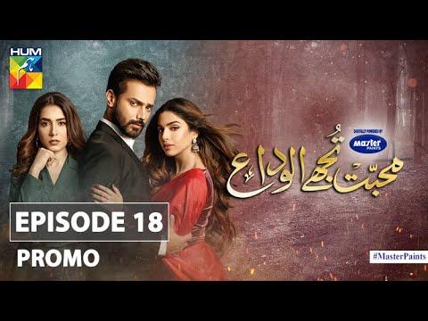 Download Mohabbat Tujhe Alvida Episode 18 Promo | Digitally Powered By Master Paints | HUM TV Drama