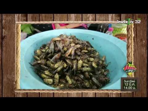 ย้อนหลัง ตะลอนข่าว : 12 มี.ค. 60 | Promo | ThairathTV
