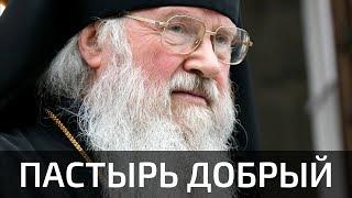 Пастырь добрый: к завершению служения Митрополита Евлогия на Владимирской кафедре
