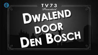 Dwalend door Den Bosch | Tommy van Deursen