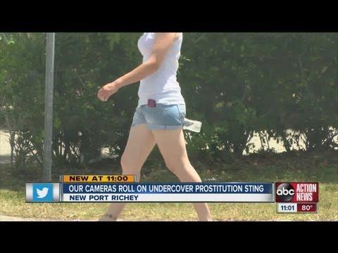 New Port Richey undercover prostitution sting
