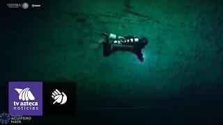 Reportaje. El gran acuífero maya. Hayan cráneos de osos de la edad de hielo