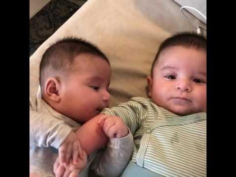 Bayi Kembar Lucu Comel Youtube