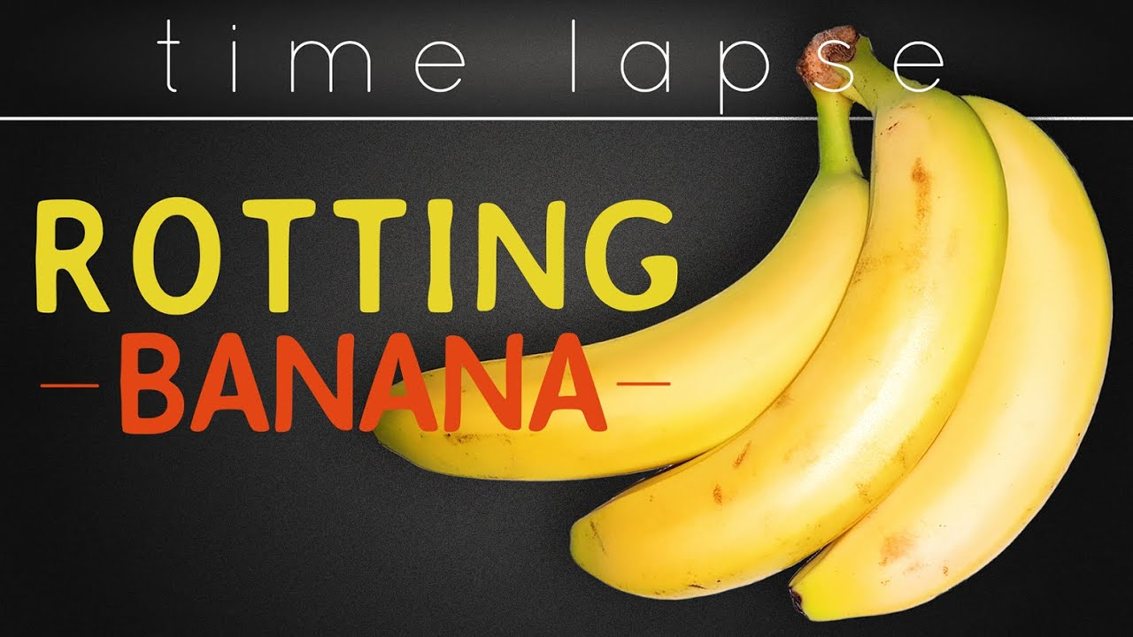 Bunch of Bananas 4K Time Lapse - (Cutting it)