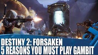 Destiny 2: Forsaken - Gambit Breakdown - 5 Reasons It