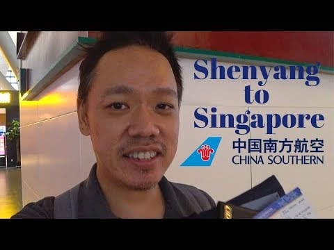#80 CHINA SOUTHERN AIRLINES (SHENYANG to SINGAPORE)