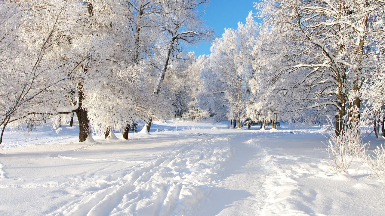 Discover The World In (HD) Part 5 Nature Snow - YouTube