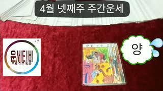 주간운세 4월 넷째주 띠별 타로운세 마스터 운세방송