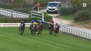 Vidéo de la course PMU PRIX RICHARD ET ROBERT HENNESSY