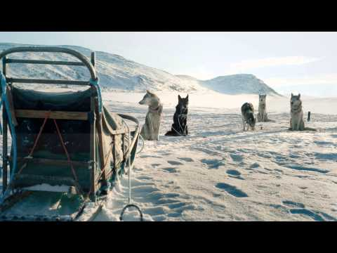 Experience Arctic Spirit | Transun Travel