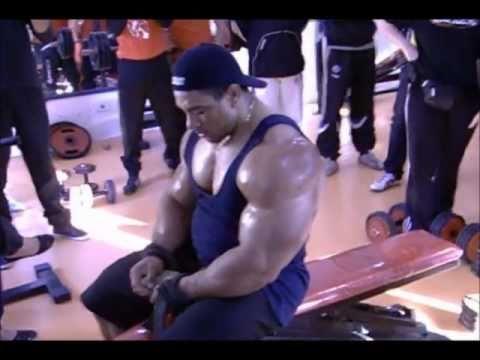 roelly winklaar back workout in tunisia part1