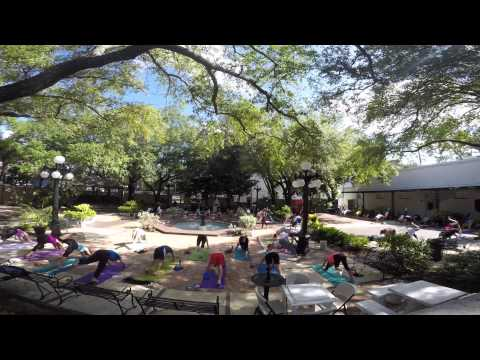 Saturday Yoga at the Museum with Ashley
