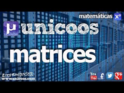 Inverse, transposed and attached matrix BACHILLERATO (SENIOR YEAR) math