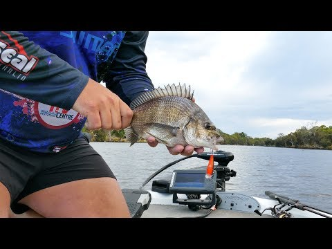 Secrets To Catching Swan River Bream On Lures Pt1