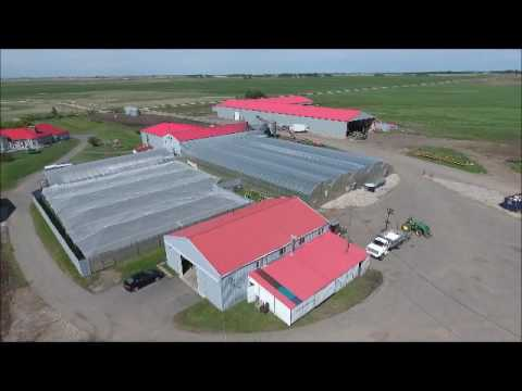 Amazing farm just East of Calgary AB
