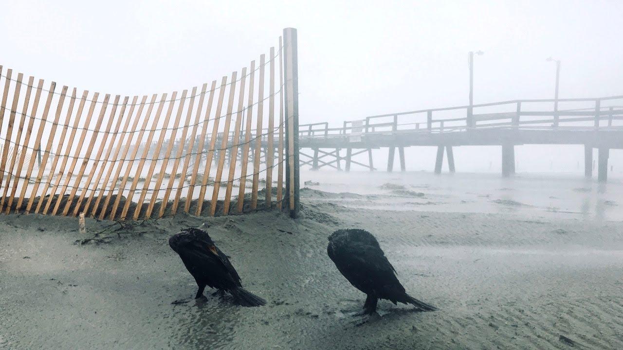 Hurricane Florence Slams Morehead City And Atlantic Beach