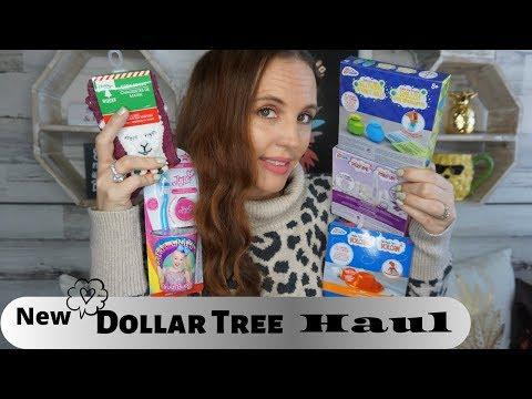Big Dollar Tree haul  November 2 2019 Fun Finds for everyone