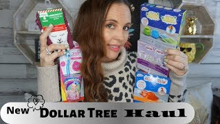 Big Dollar Tree haul| November 2 2019 Fun Finds for everyone