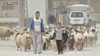 يوميات اللجوء السوري