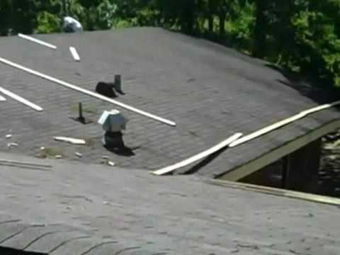 Download The best roofer in Des Moines ia Iowa