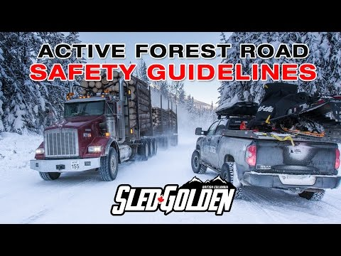 SledGolden Active Forest Road Safety Guidelines 2017