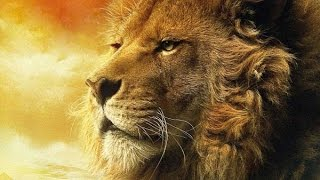 Behave Like A Lion - Motivational video