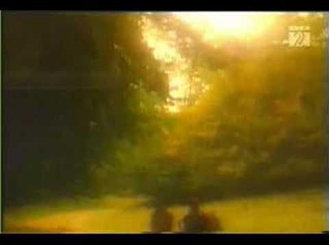 Gramsespektrum - Richard Zedalius - Acoustic Dreams