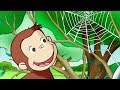 Curious George 🐵Curious George, Web Master 🐵Kids Cartoon 🐵Kids Movies 🐵Videos for Kids