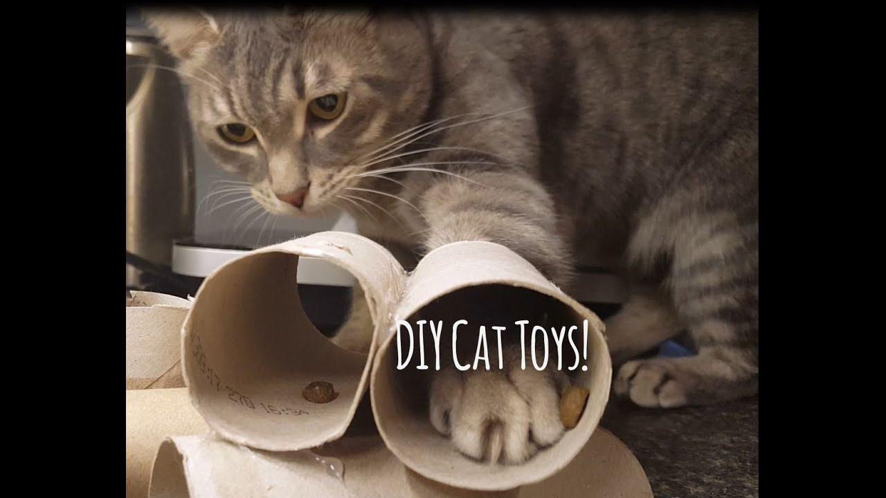 Diy Cat Toys Cat Enrichment Puzzle Feeder Youtube