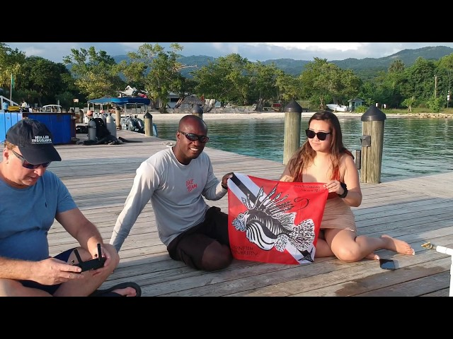SEE THE FIRST EVER LIONFISH IN JAMAICA CLEANED & FILMED BY A DRONE